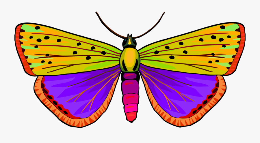Monarch Butterfly Moth Pieridae Brush-footed Butterflies - Butterfly, Transparent Clipart
