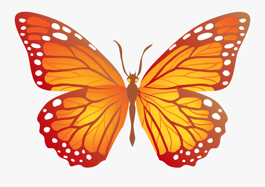 Butterfly Cliparts Png Orange - Butterfly Yellow And Orange, Transparent Clipart