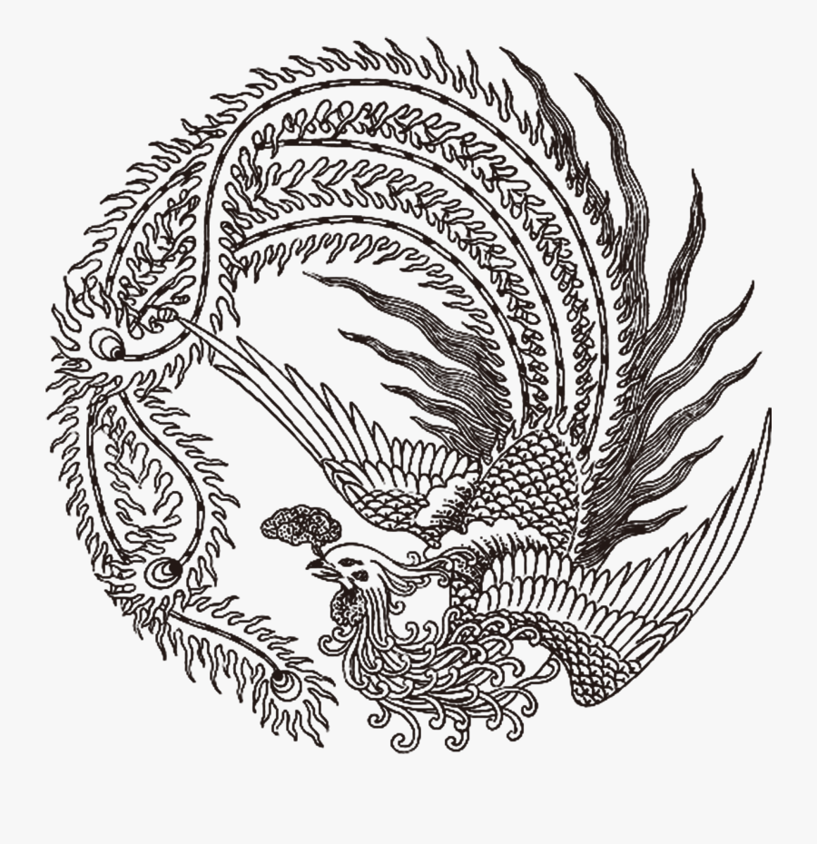 Collection Of Free Phoenix Drawing Dragon Download - Chinese Phoenix Black And White, Transparent Clipart