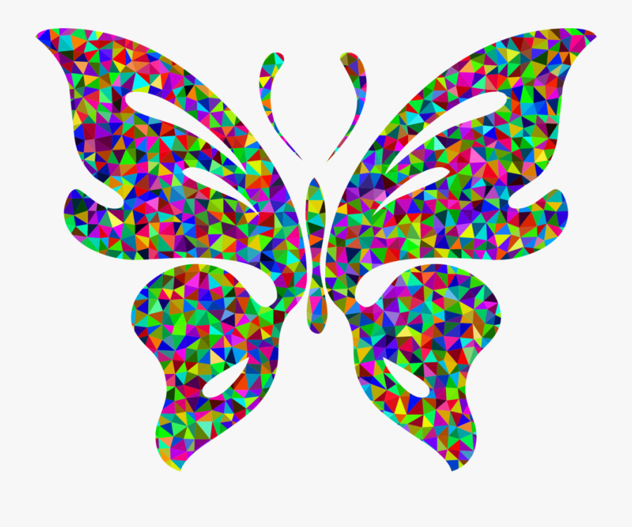 Butterfly,leaf,symmetry - Chromatic Butterfly, Transparent Clipart