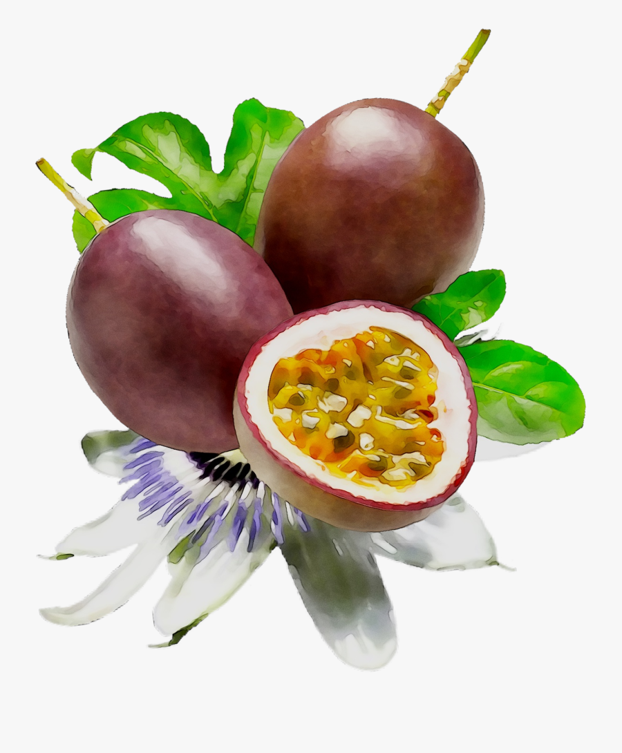 Food Fruit Passion Lipstick Cosmetics Png Free Photo - Passion Fruit Flower Png, Transparent Clipart