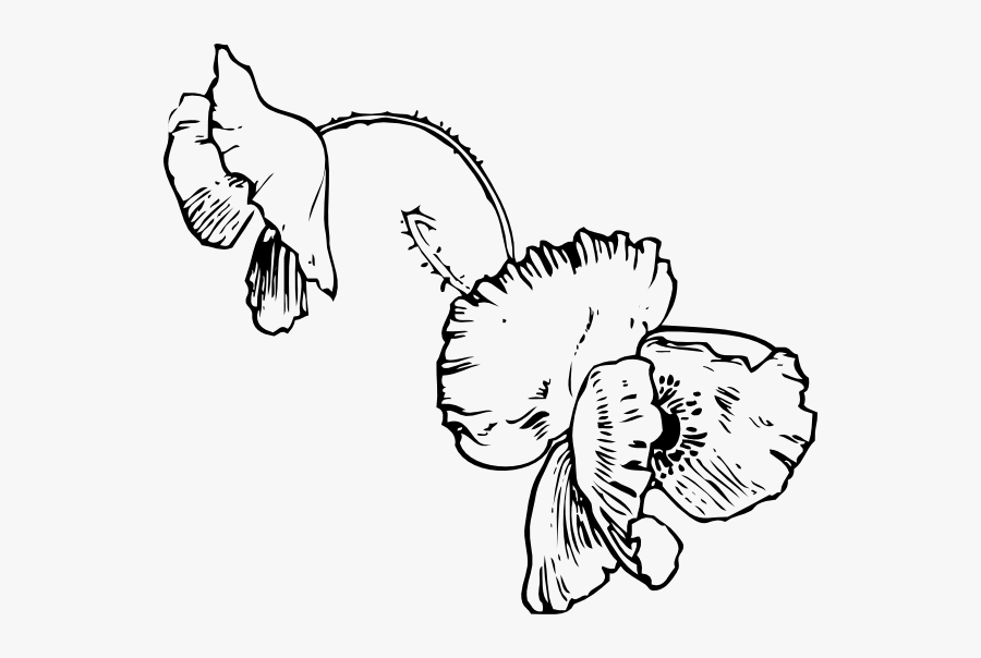 Free Vector Poppy Tattoo Clip Art - Dead Flowers Coloring Pages, Transparent Clipart