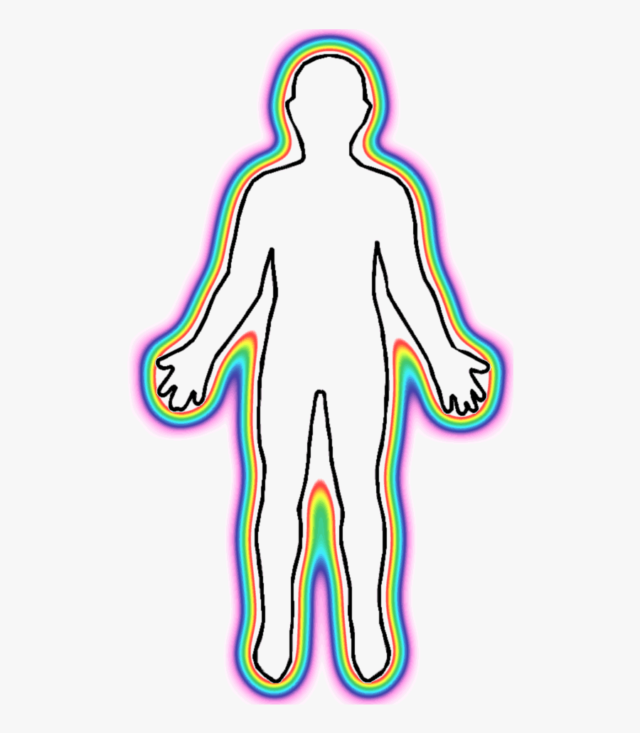 Outline Human Body - Human Body Outline, Transparent Clipart