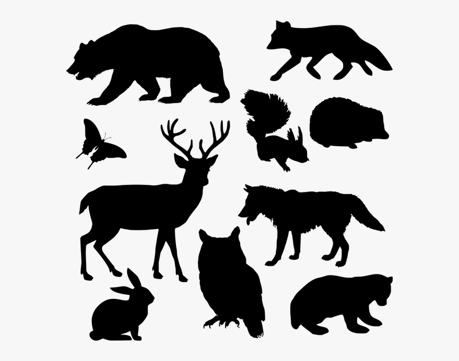 Silhouette Drawing Of Animals, Transparent Clipart