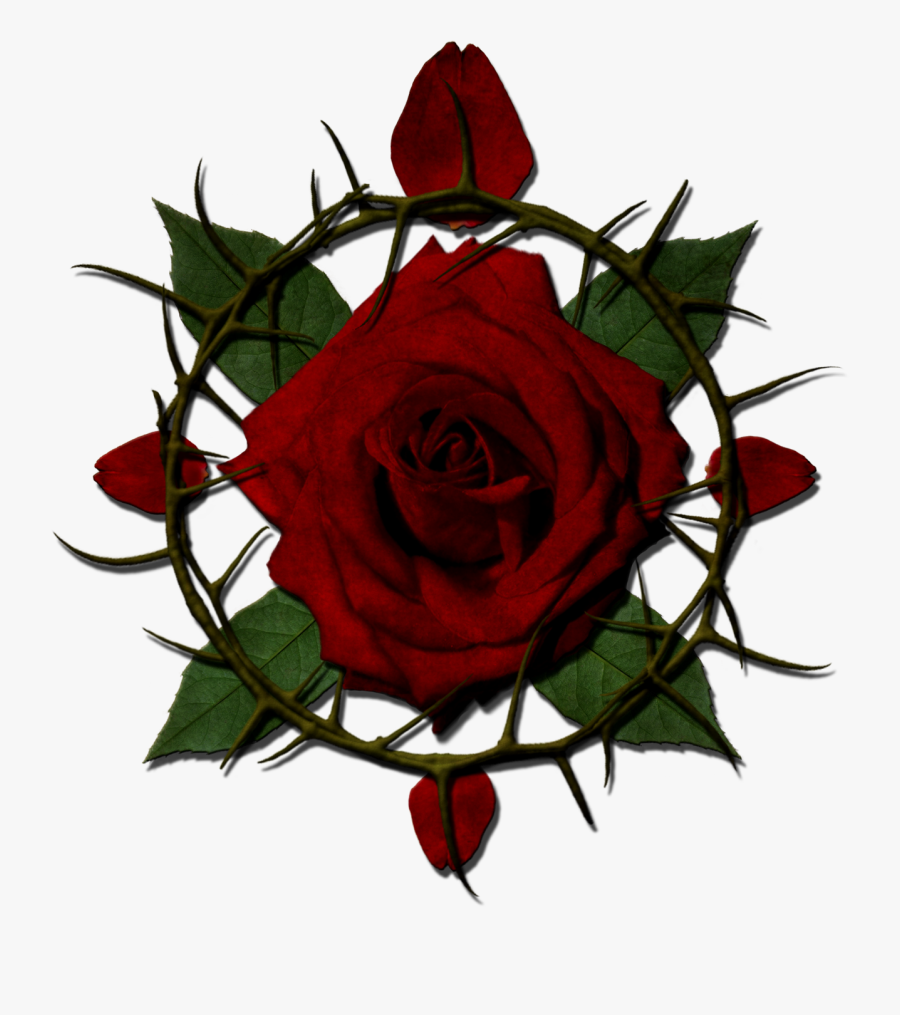 Rose With Thorns Clipart , Png Download - Rose With Thorns Transparent, Transparent Clipart