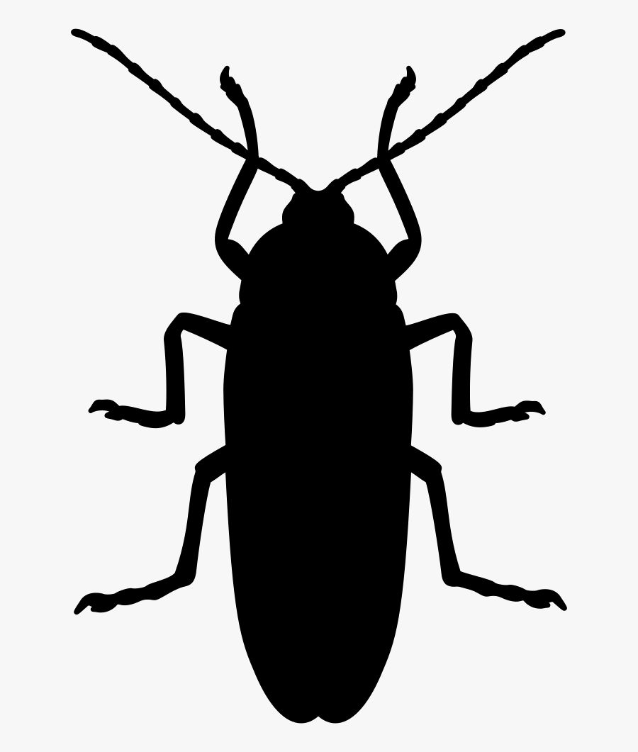Cockroach Mosquito Beetle Silhouette Pest - Black Cockroach Silhouette, Transparent Clipart