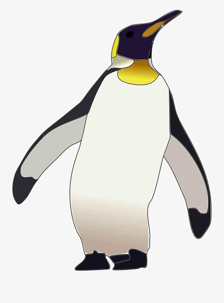 Pin By S Wigand On Kid Crafts - Cartoon King Penguin Drawing, Transparent Clipart