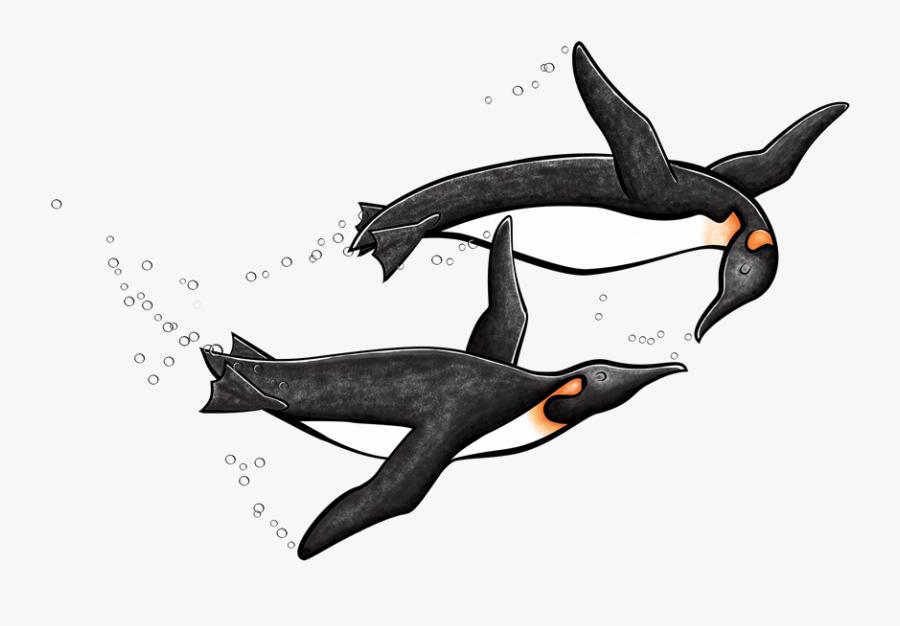 Antarctica Drawing King Penguin Transparent Png Clipart - King Penguin, Transparent Clipart