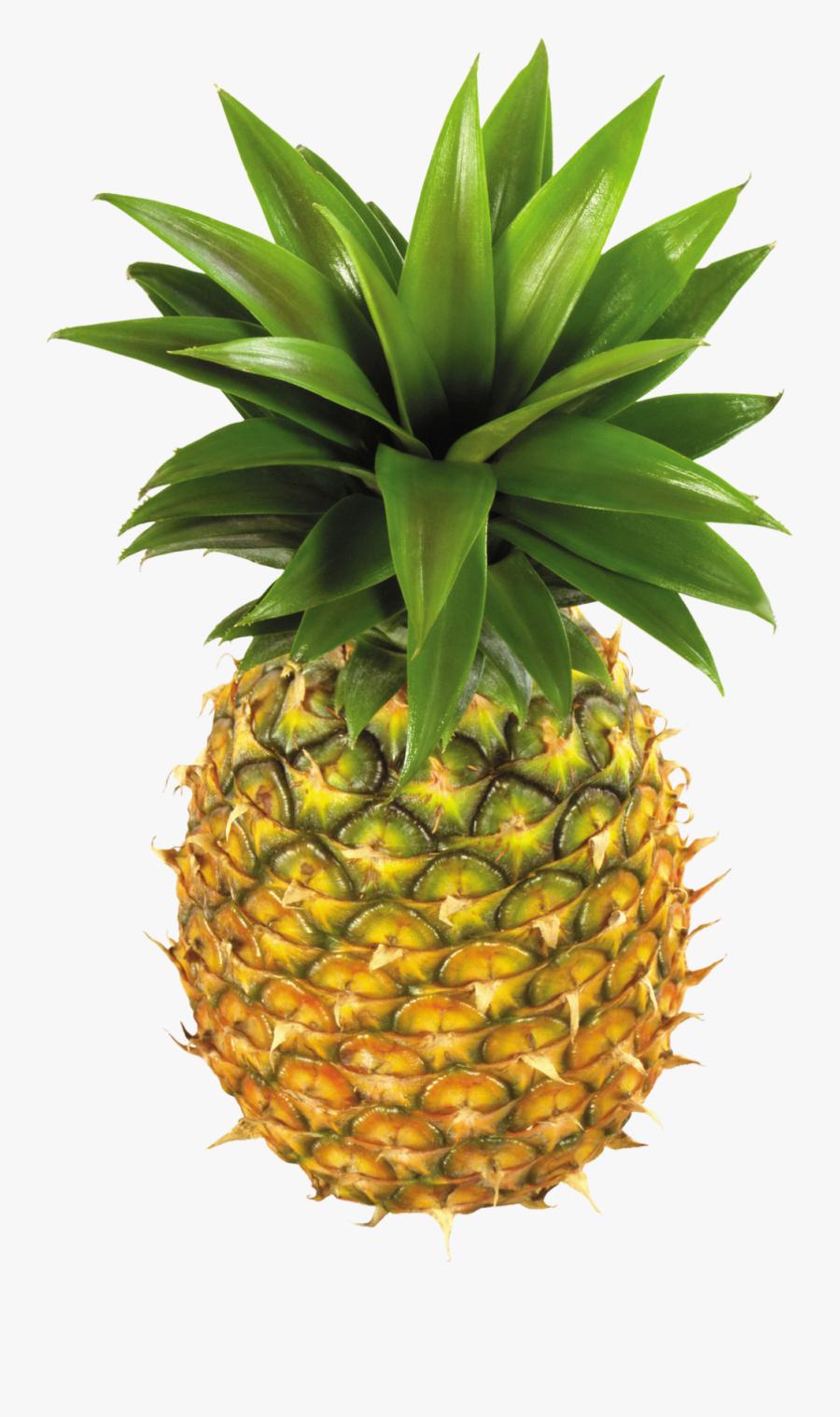 Transparent Background Pineapples Fruit, Transparent Clipart