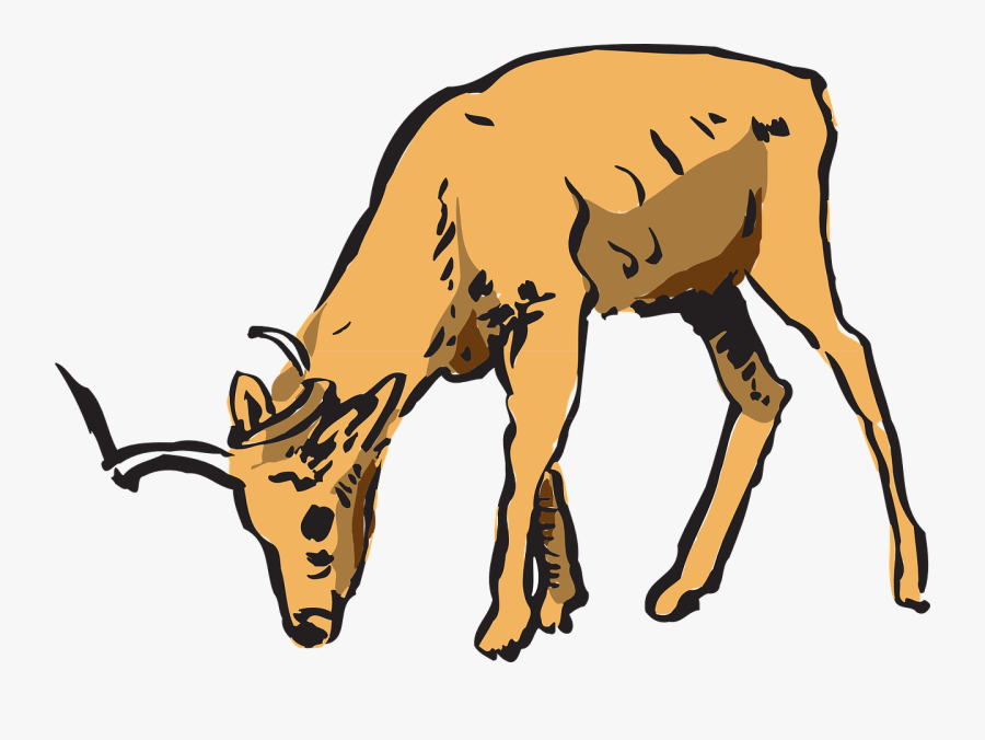 Antelope Pinart Royalty Free Stock Photo Animated - Deer Eating Clipart, Transparent Clipart