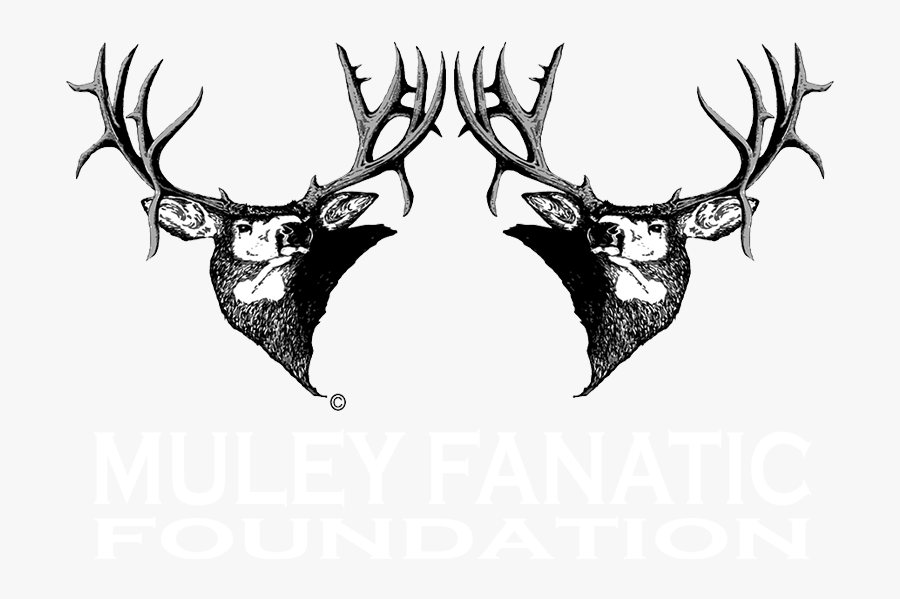 Muley Fanatics, Transparent Clipart