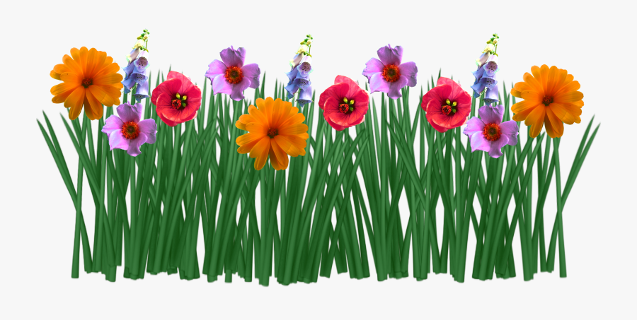 Colorful Flowers Free Image - Colorful Spring Flowers Drawing, Transparent Clipart