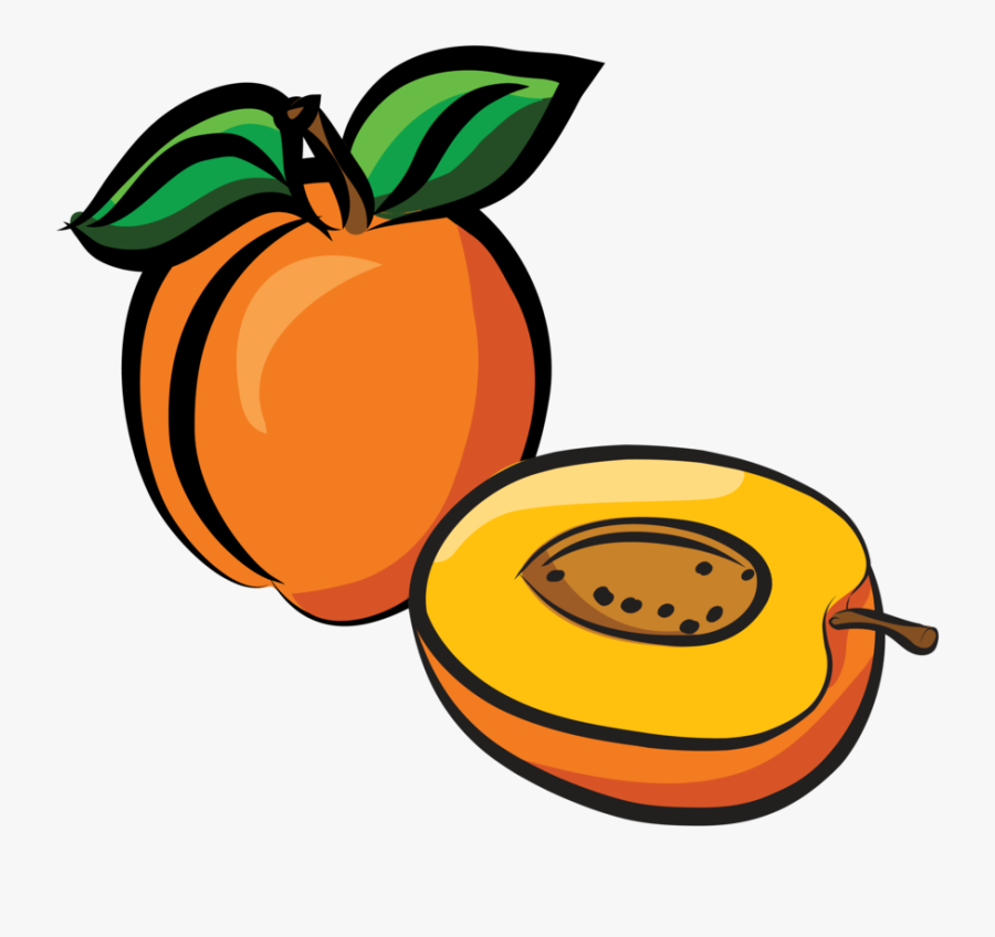 Apricot Drawing, Transparent Clipart