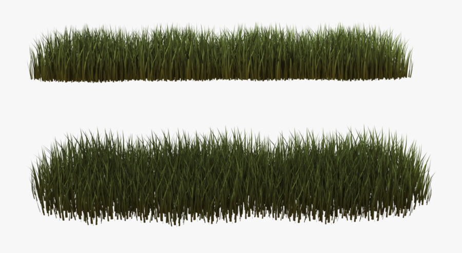 Withered Grass Stock Vector Illustration And Royalty Free Withered Grass  Clipart
