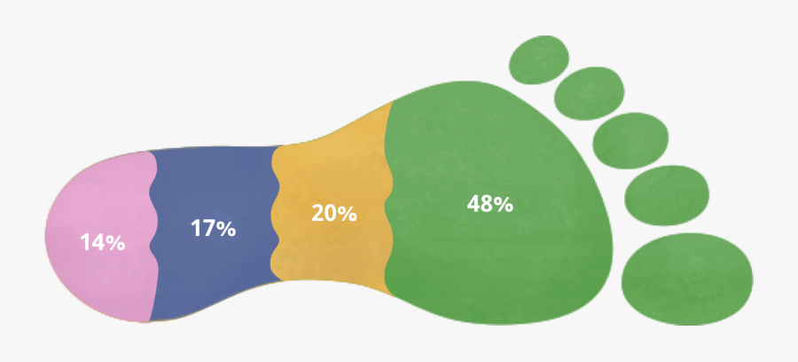 """Graph Of Causes Of  Vancouver""""s Ecological Footprint - Ecological Footprint, Transparent Clipart"""