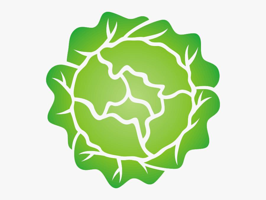 Head Of Lettuce Svg Clip Arts - Head Of Lettuce Clipart, Transparent Clipart