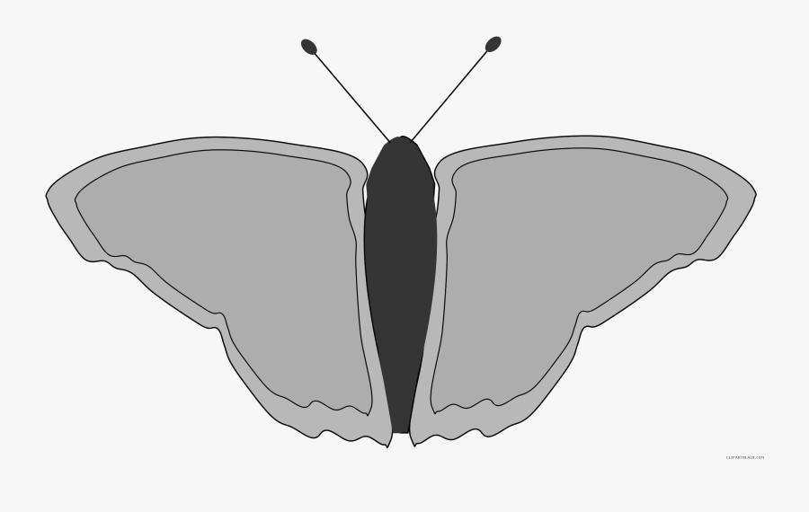Butterfly Animal Free Black White Clipart Images Clipartblack - Brush-footed Butterfly, Transparent Clipart