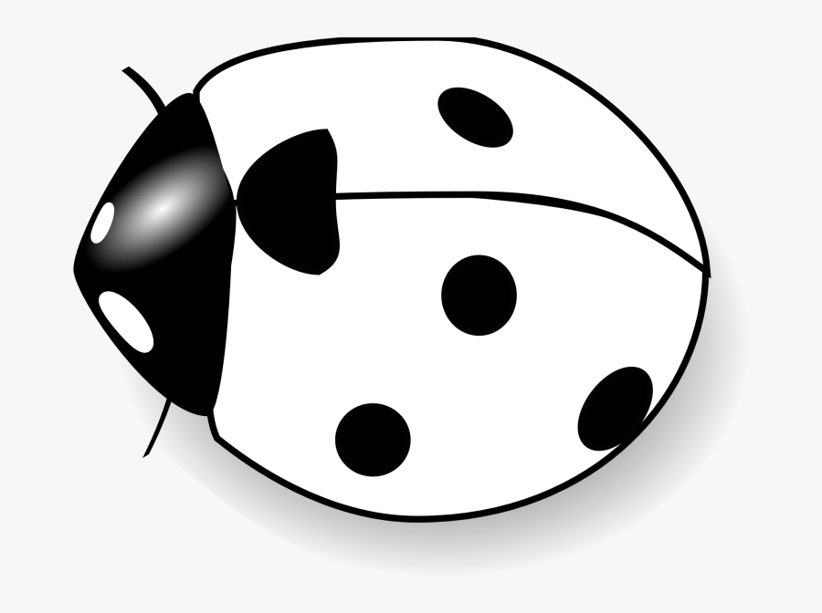 Insects Clipart Black And White - Lady Bug Black And White, Transparent Clipart