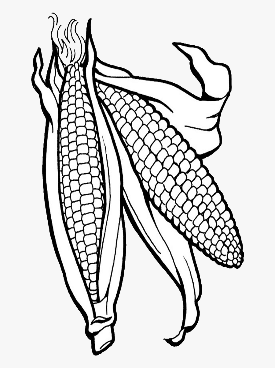 Corn Clipart Png Corn Clipart - Corn Coloring Page , Free ...