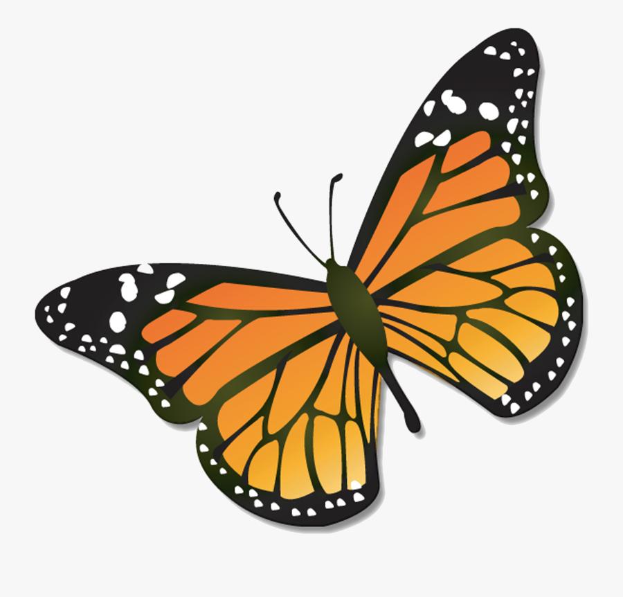 Clip Art Dragonfly Transprent, Transparent Clipart