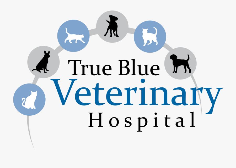 True Blue Veterinary Hospital - Graphic Design, Transparent Clipart