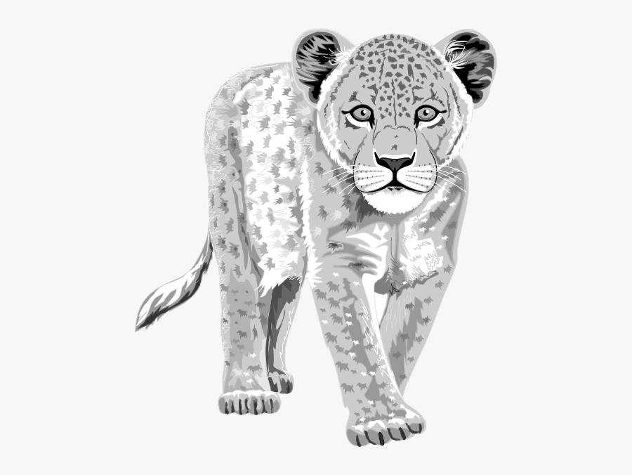 Leopard Svg Clip Arts - Leopard Got His Spots Worksheet, Transparent Clipart
