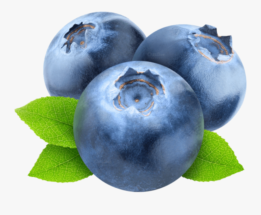 Free Png Blueberries Png Images Transparent - Blueberry Png Clipart, Transparent Clipart