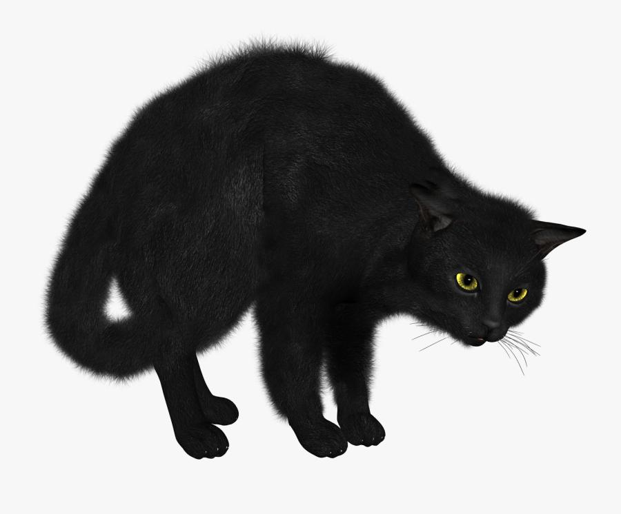 Black Cat Looking - Transparent Background Black Cat Png, Transparent Clipart