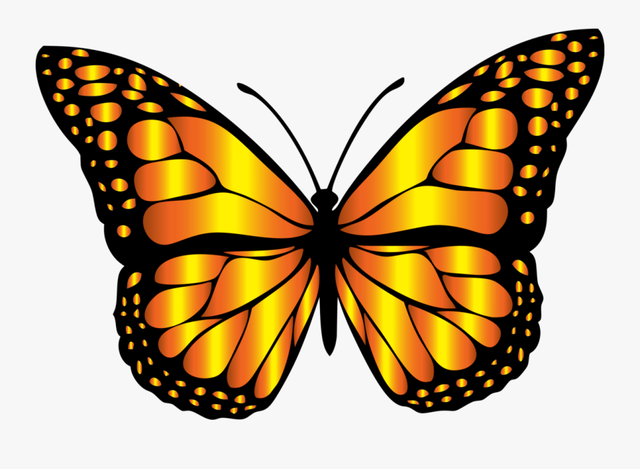 Monarch Butterfly Clipart, Transparent Clipart