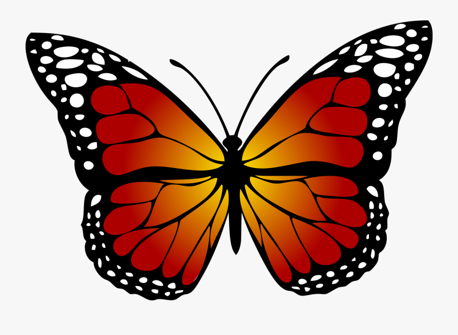 Butterfly Monarch Abstract Free Photo - Monarch Butterfly Clipart, Transparent Clipart