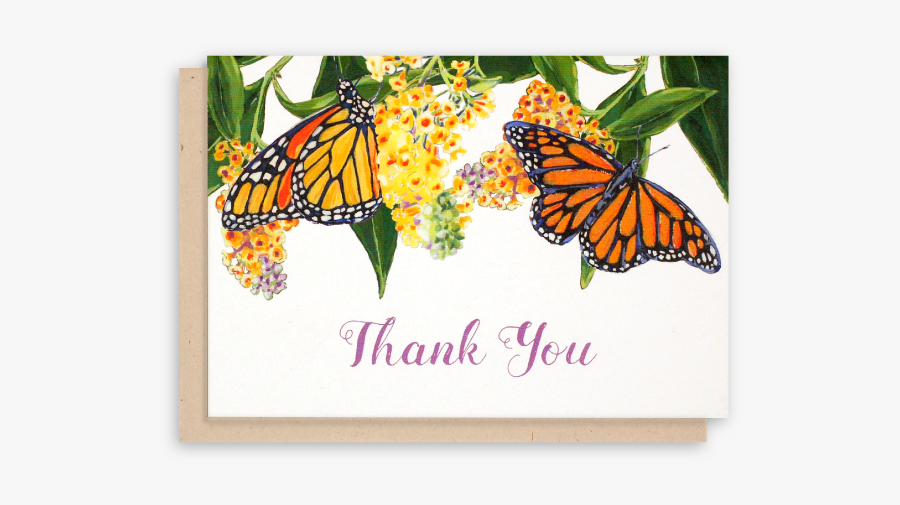 Thank You For The Butterflies, Transparent Clipart