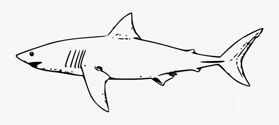 Great White Shark Clip Art, Transparent Clipart