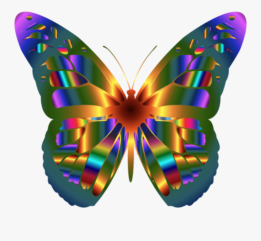 Real Rainbow Monarch Butterfly, Transparent Clipart
