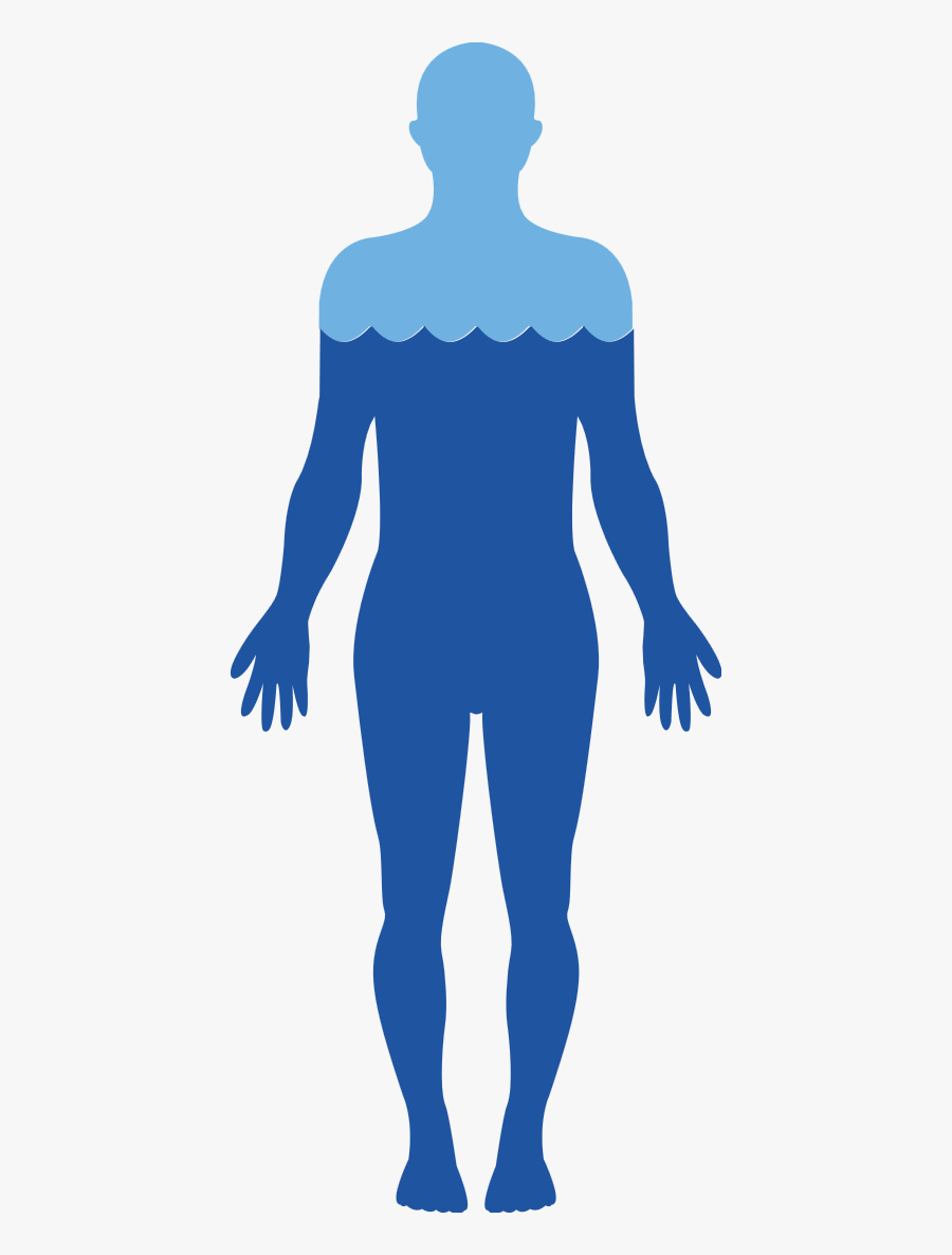 Body Free Png Image - Human Body Water Transparent, Transparent Clipart