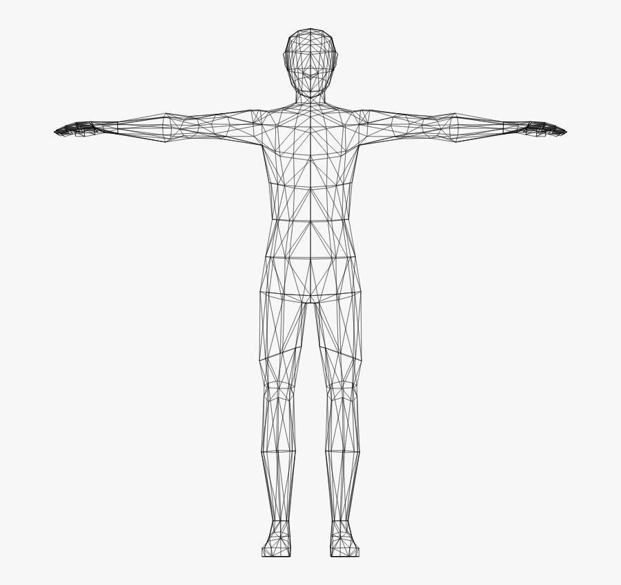 Art,skeleton,back - Transparent Human Body Clipart, Transparent Clipart