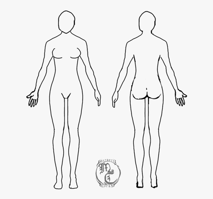 Human Body Outline Png - Human Body Outline Female, Transparent Clipart