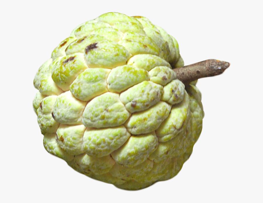 Transparent Green Apple Clipart - Custard Apple Fruit Png, Transparent Clipart