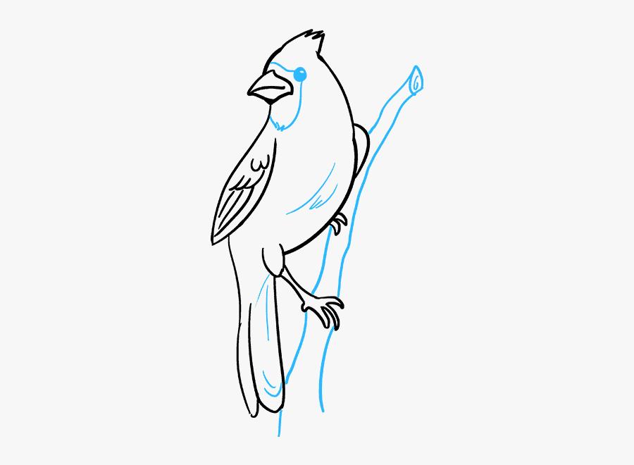 How To Draw Cardinal Bird - Cardinal Bird Drawings Easy, Transparent Clipart