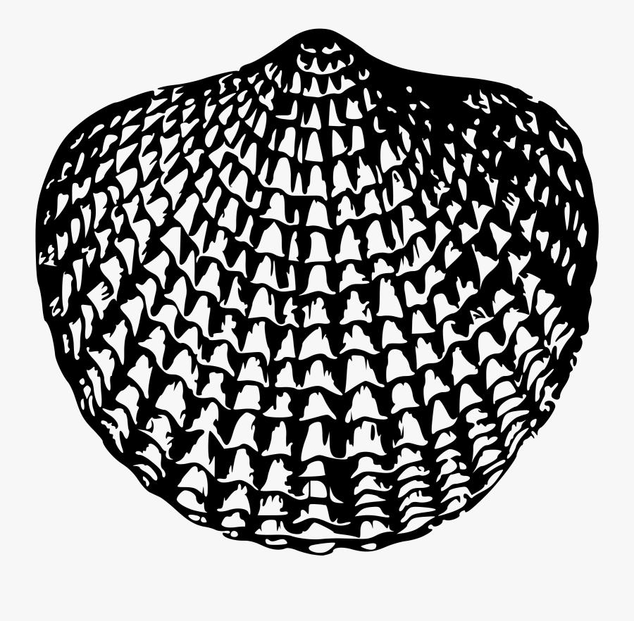 Sea Shell - Hallway Flooring, Transparent Clipart