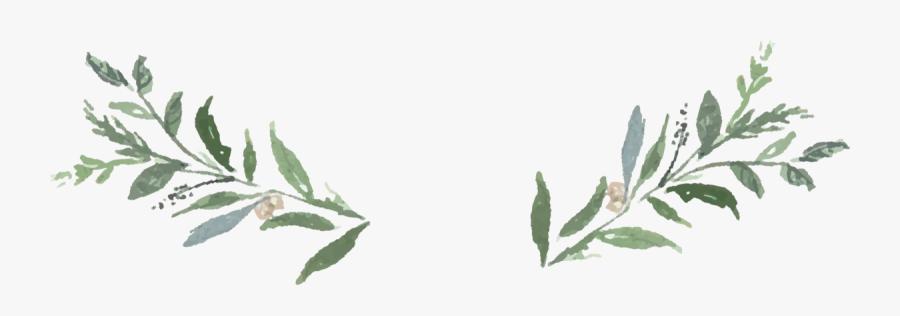 Clip Art Greenery Clip Art - Transparent Greenery Clipart, Transparent Clipart