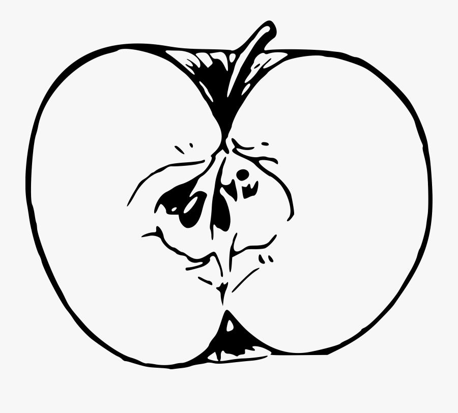 Apple Line Drawing At Getdrawings - Drawing Image Of A Apple, Transparent Clipart