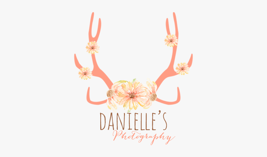 Antlers And Flowers Transparent, Transparent Clipart