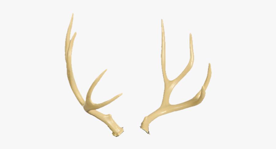 Deer Horn Png - Transparent Background Moose Antlers Transparent, Transparent Clipart