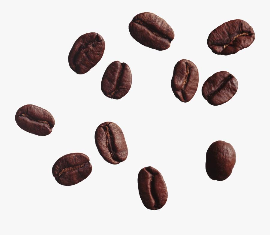 Coffee Bean Vector Clip Art 2 - Coffee Bean Transparent Background, Transparent Clipart