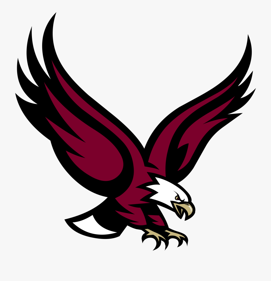 Eagle Vector - Boston College Eagle Logo, Transparent Clipart