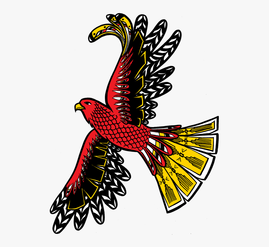 Eagles Clipart Life Cycle - Hawk, Transparent Clipart