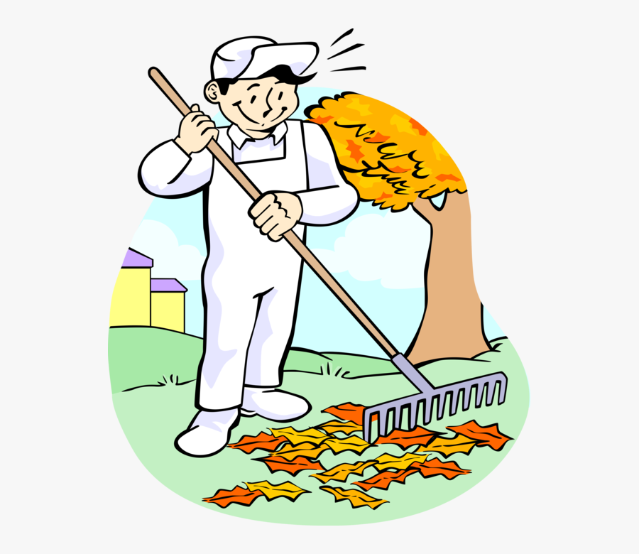 Vector Illustration Of Lawn Care Groundskeeper Raking - Raking Leaves Clip Art, Transparent Clipart