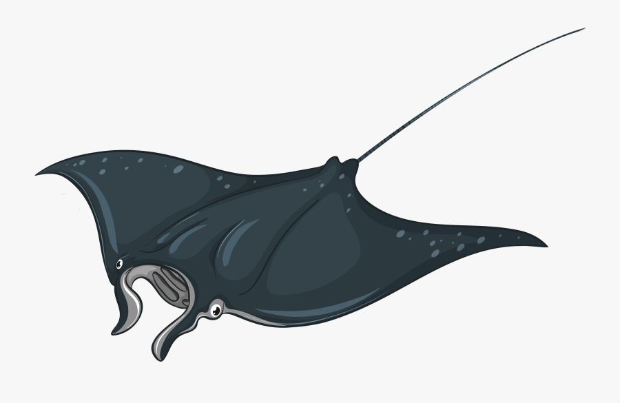 Skate Fish Png Clipart - Manta Ray Illustration, Transparent Clipart
