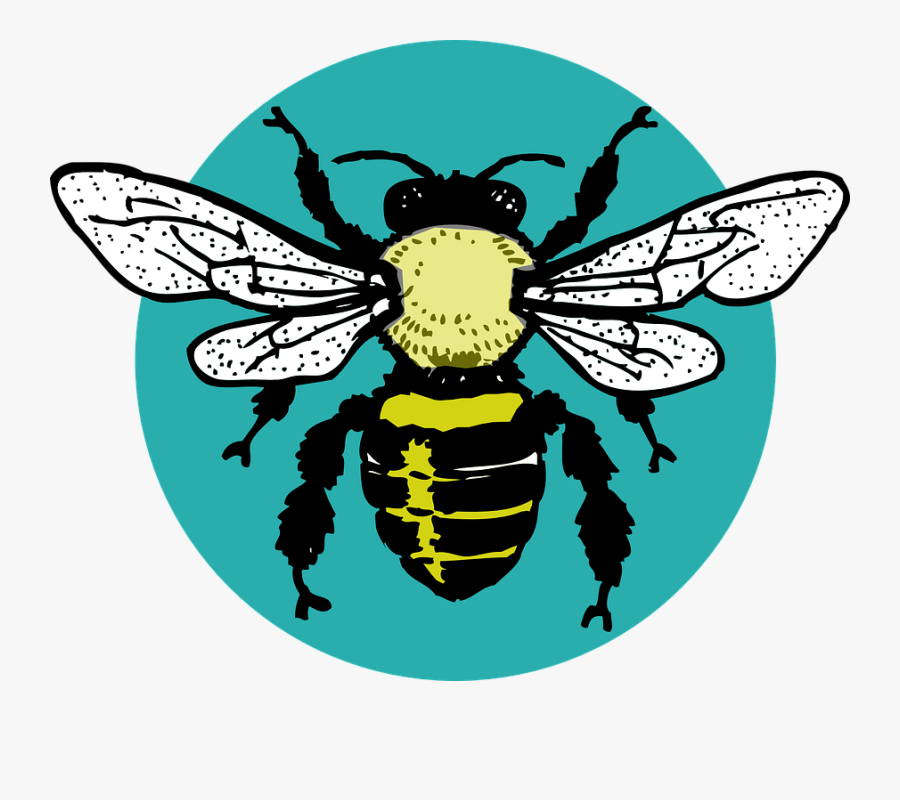 Hornet Clipart Tribal - Black And White Bee Outline, Transparent Clipart