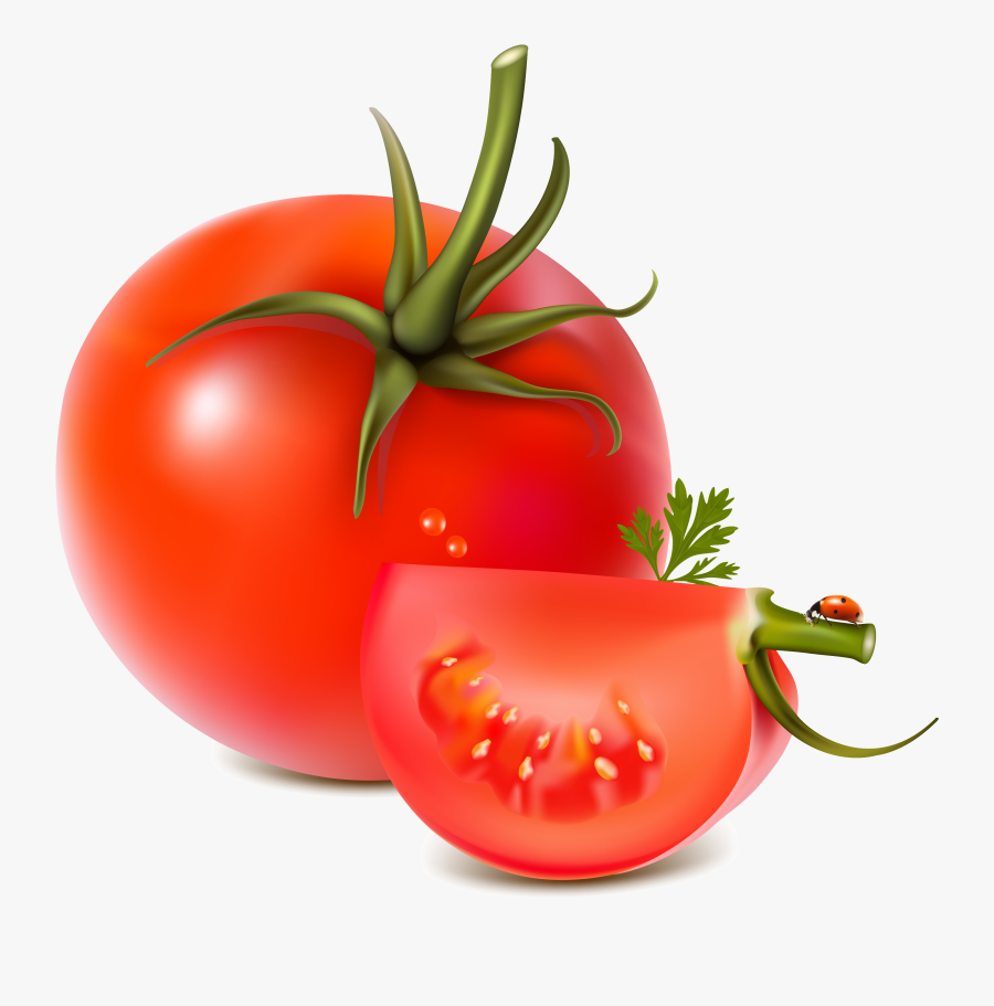 Tomato Clipart Transparent Background - Vector Fruits And Vegetables Png, Transparent Clipart